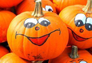 pumpkin-local-plumber-elkton